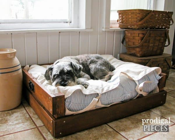 Pet Bed DIY
