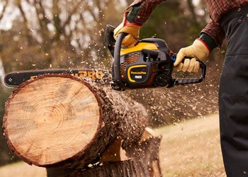 Best 20-Inch Chainsaw
