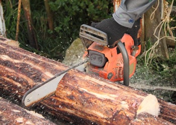 Best Chainsaws for Milling