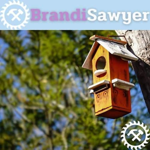 learn how to make a wooden birdhouse